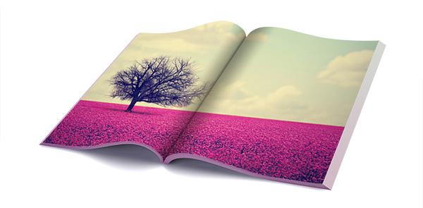conseils_astuces_photolife_papier_mat